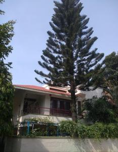 Gallery Cover Image of 4000 Sq.ft 3 BHK Independent House for buy in RR Nagar for 22500000