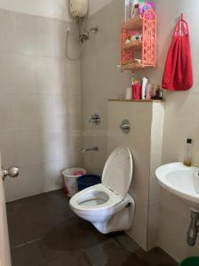 Bathroom Image of Female Flatmate in Palava Phase 1 Nilje Gaon