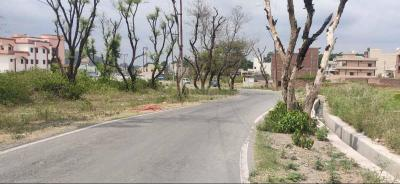Gallery Cover Image of 1800 Sq.ft Residential Plot for buy in Kulhan for 5600000