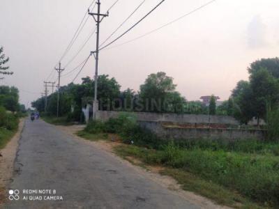 85 Sq.ft Residential Plot for Sale in Noida Extension, Greater Noida