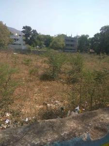 14400 Sq.ft Residential Plot for Sale in Akkarampalle, Tirupathi