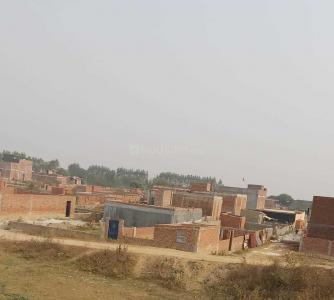 Gallery Cover Image of 450 Sq.ft Residential Plot for buy in Sector 142 for 550000