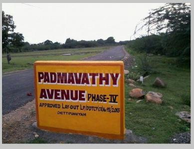 1000 Sq.ft Residential Plot for Sale in Chettipunyam, Chennai
