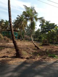 500 Sq.ft Residential Plot for Sale in Salcete, Goa