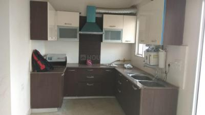 Gallery Cover Image of 1250 Sq.ft 2 BHK Apartment for buy in Exotica Fresco, Sector 137 for 7000000