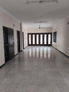 Gallery Cover Image of 2400 Sq.ft 3 BHK Apartment for rent in Egmore for 50000