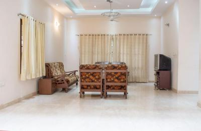 Living Room Image of PG 4643117 Koramangala in Koramangala