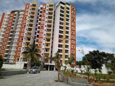 Gallery Cover Image of 1035 Sq.ft 2 BHK Apartment for buy in Whitefield for 4800000