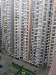 Gallery Cover Image of 700 Sq.ft 2 BHK Apartment for rent in Noida Extension for 7500