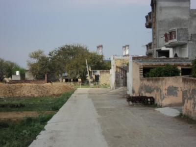 Gallery Cover Image of 972 Sq.ft 3 BHK Independent House for buy in Sector 21D for 9500000