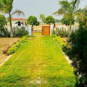 1200 Sq.ft Residential Plot for Sale in Golf City, Lucknow