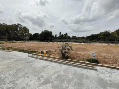 Gallery Cover Image of 1200 Sq.ft Residential Plot for buy in Whitefield for 8400000
