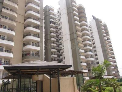 Gallery Cover Image of 925 Sq.ft 2 BHK Apartment for rent in Paras Tierea, Sector 137 for 10000