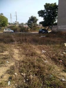 241 Sq.ft Residential Plot for Sale in Sector 43, Faridabad