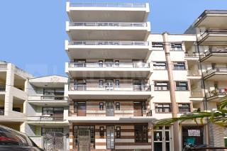 Building Image of PG 4884864 Sector 24 in DLF Phase 3