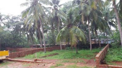 2283 Sq.ft Residential Plot for Sale in Padubidri, Udupi