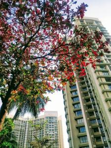 Gallery Cover Image of 960 Sq.ft 2 BHK Apartment for buy in Peninsula Ashok Gardens, Parel for 34000000