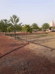 Gallery Cover Image of  Sq.ft Residential Plot for buy in Nainana Jat for 900000