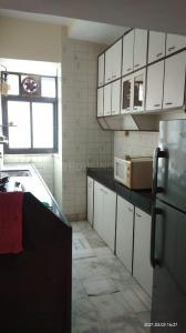 Gallery Cover Image of 500 Sq.ft 1 BHK Apartment for rent in Andheri West for 35000