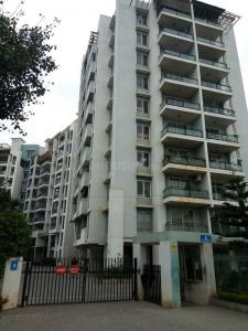 5+ BHK Apartment