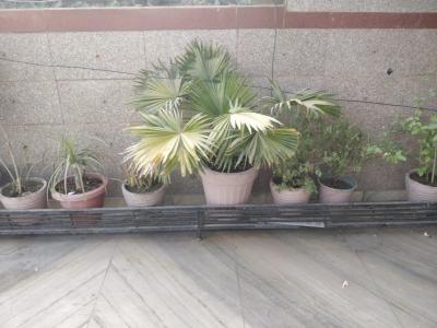 Balcony Image of PG 6471276 Madhu Vihar in Madhu Vihar
