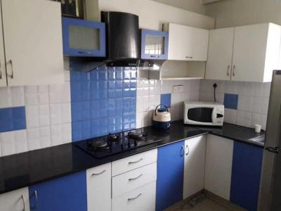 Gallery Cover Image of 1100 Sq.ft 2 BHK Independent House for rent in Basaveshwara Nagar for 35000