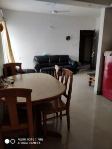 Gallery Cover Image of 850 Sq.ft 2 BHK Apartment for rent in Ambegaon Budruk for 14000