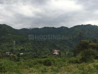 1800 Sq.ft Residential Plot for Sale in Bhagwant Pur, Dehradun