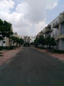 Gallery Cover Image of 3008 Sq.ft 4 BHK Villa for rent in Surajpur for 20000