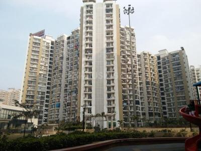 Gallery Cover Image of 1735 Sq.ft 3 BHK Apartment for buy in Prateek Wisteria, Sector 77 for 10500000