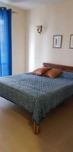 Gallery Cover Image of 1200 Sq.ft 2 BHK Apartment for rent in Sector 43 for 45000