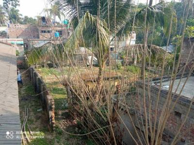 4900 Sq.ft Residential Plot for Sale in Collegepara, Nadia