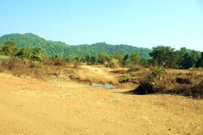 99000 Sq.ft Residential Plot for Sale in Hans Nagar, Sambalpur