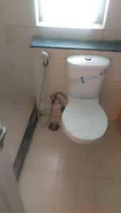 Common Bathroom Image of 1440 Sq.ft 3 BHK Independent House for buy in Sector 16 for 11800000