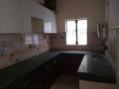 Gallery Cover Image of 1150 Sq.ft 2 BHK Apartment for rent in Aims Golf Avenue 2, Sector 75 for 13000