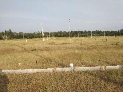 1500 Sq.ft Residential Plot for Sale in Sriramapura, Mysore