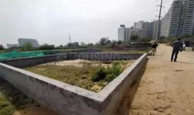 450 Sq.ft Residential Plot for Sale in Sector 84, Noida