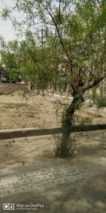 232 Sq.ft Residential Plot for Sale in Abhay Khand, Ghaziabad