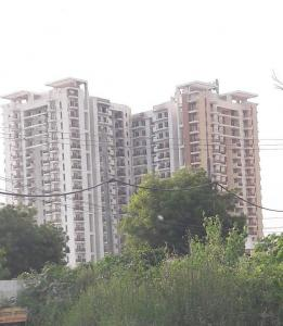 Gallery Cover Image of 1452 Sq.ft 3 BHK Apartment for rent in Sector 2, sohna for 16000