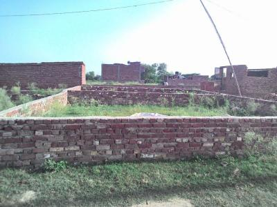 Gallery Cover Image of 270 Sq.ft Residential Plot for buy in Jaitpur for 330000