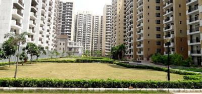 Gallery Cover Image of 1365 Sq.ft 3 BHK Apartment for rent in Noida Extension for 8000