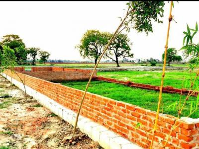 1250 Sq.ft Residential Plot for Sale in Purseni, Lucknow
