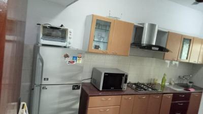 Kitchen Image of PG 7142264 Koregaon Park in Koregaon Park