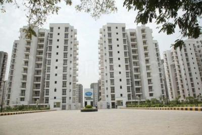 Gallery Cover Image of 700 Sq.ft 2 BHK Apartment for rent in  Floridaa Affordable Housing, Sector 81 for 7000