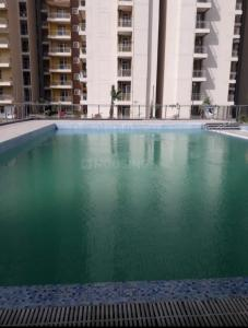 Swimming Pool Image of 1525 Sq.ft 3 BHK Apartment for buy in  Panchtatva Phase 1, Noida Extension for 5500000