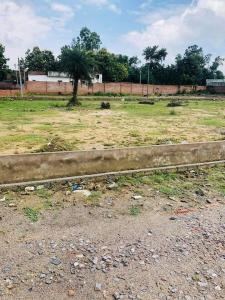 2450 Sq.ft Residential Plot for Sale in Golf City, Lucknow