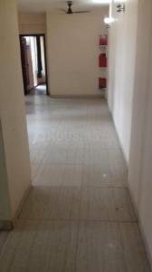 Gallery Cover Image of 1759 Sq.ft 3 BHK Apartment for rent in Sector 104 for 29000