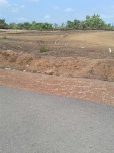 Gallery Cover Image of  Sq.ft Residential Plot for buy in Kavoor for 13000000