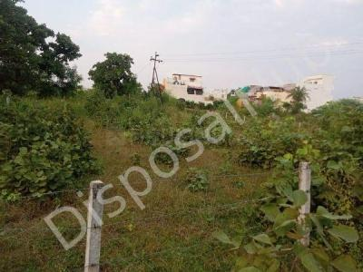 7405 Sq.ft Residential Plot for Sale in Palasi, Bhopal