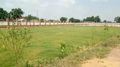 900 Sq.ft Residential Plot for Sale in Tijara, Bhiwadi